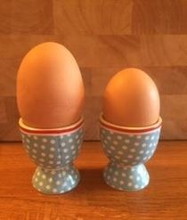 Big Egg - Double yolkerEggs for guests - Lower Keats Glamping Devon