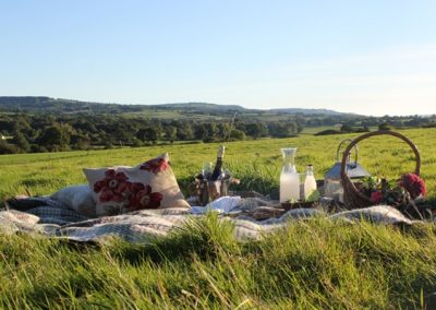 Picnic at Lower Keats Meadow Glamping Devon